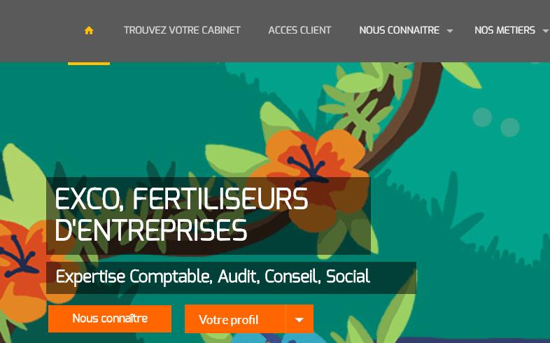 Le Site d'EXCO france : Expert Comptable , Audit , Conseil